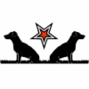 Dog's Window - Rescue