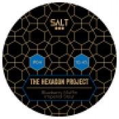 Salt - The Hexagon Project 04