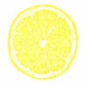 Pastore - Limone