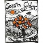 Severn Cider - New Orchard Sweet 500ml Can draught fill
