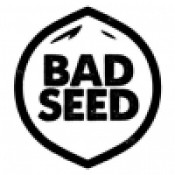 Bad Seed Brewery - Team Player